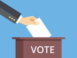 Imaginea candidatului